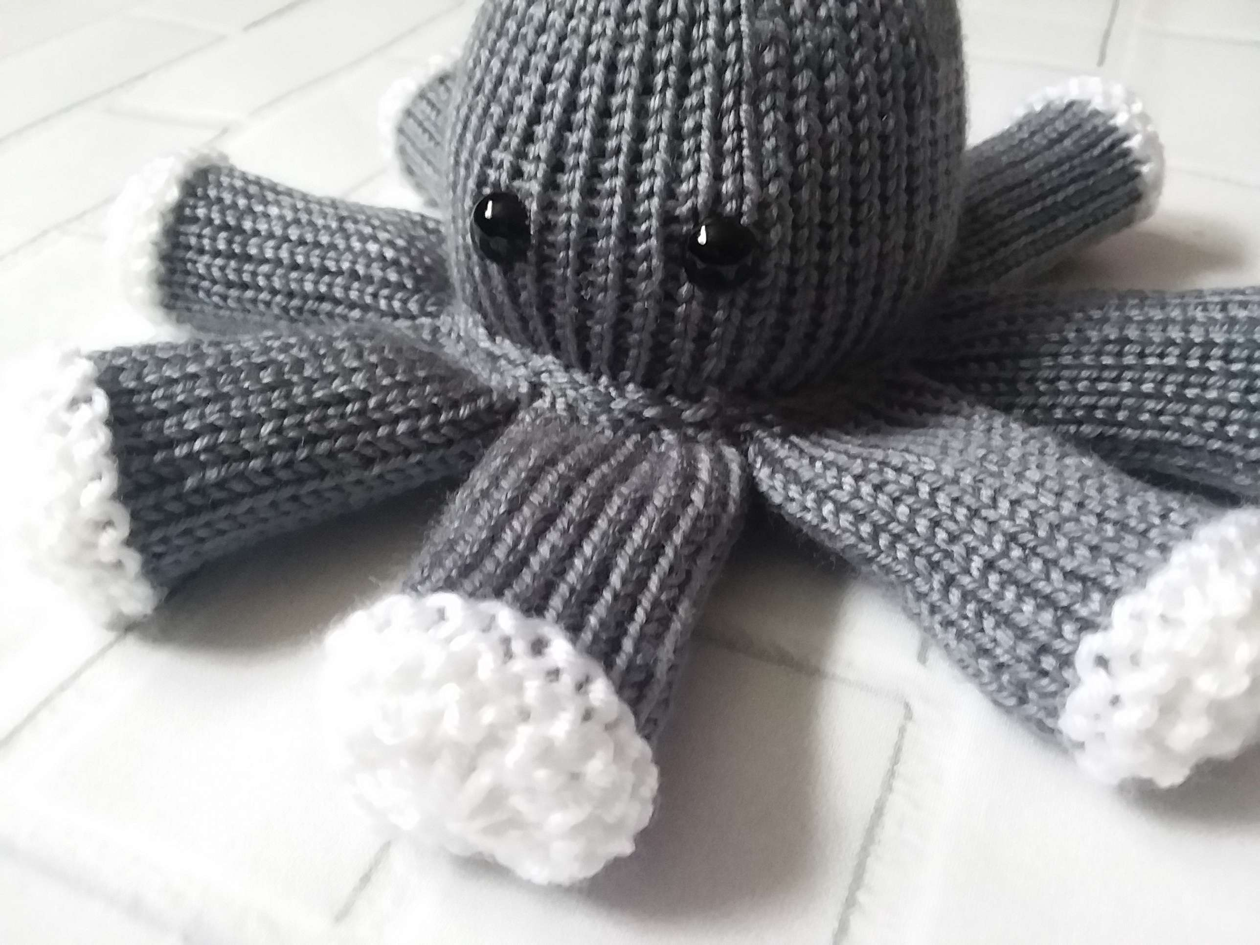 'Little' Octopus