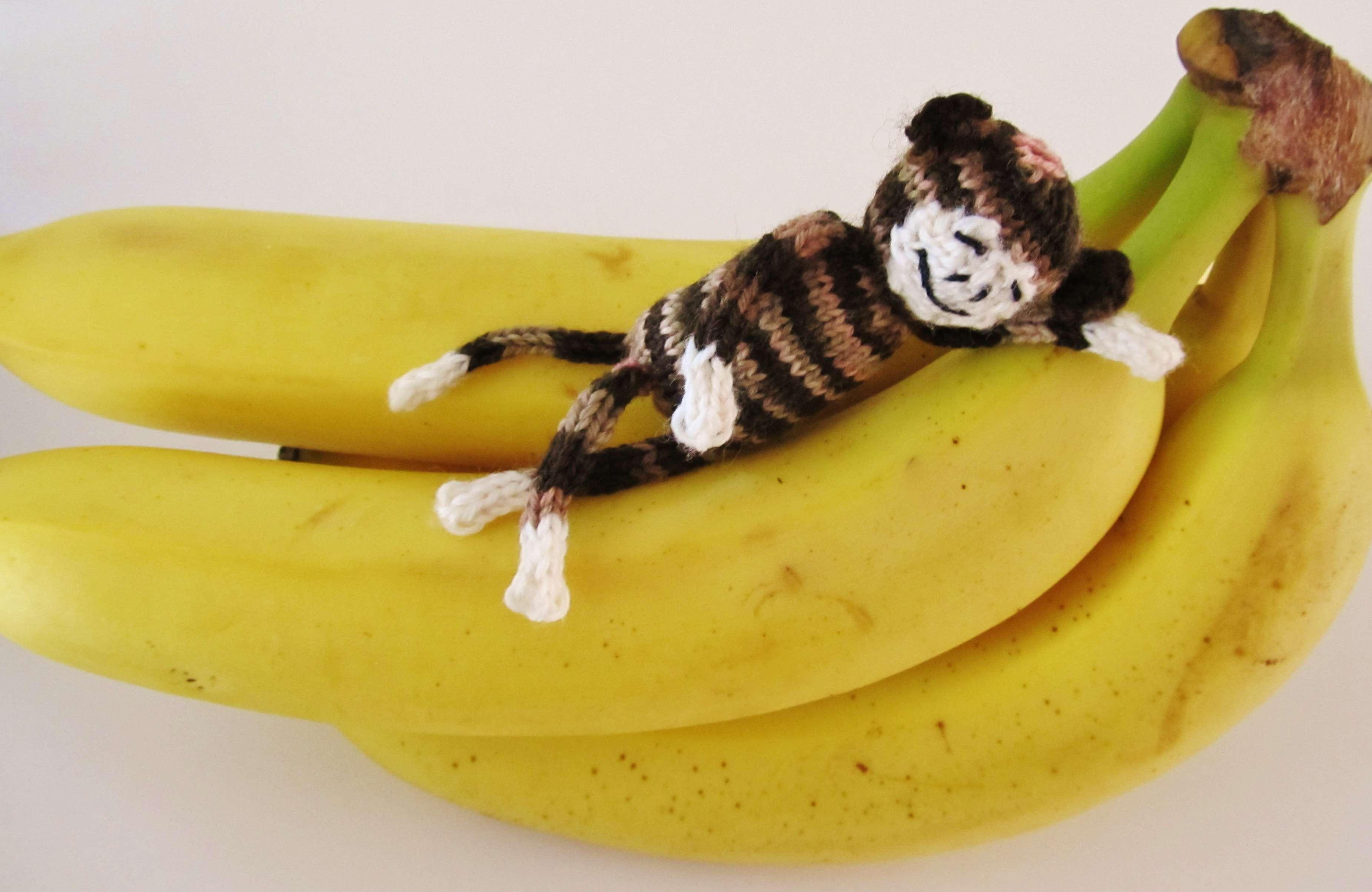 Whimsical Loom Knits – Mini Monkey